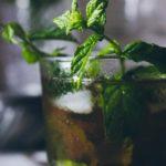 Mint Julep Bourbon drink